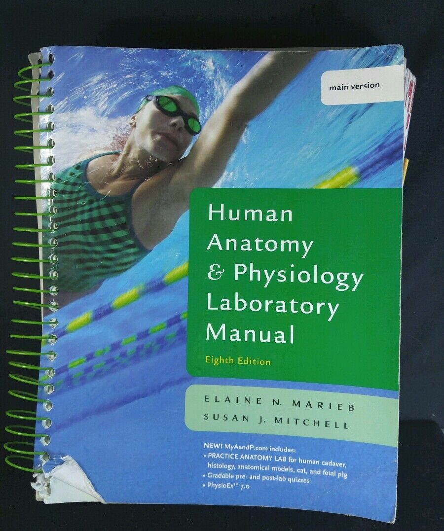 The Benjamin Cummings Series in Human Anatomy and Physiology: Human Anatomy  and Physiology Laboratory Manual by Marieb, Peter Z. Zao, Timothy Stabler  and ...