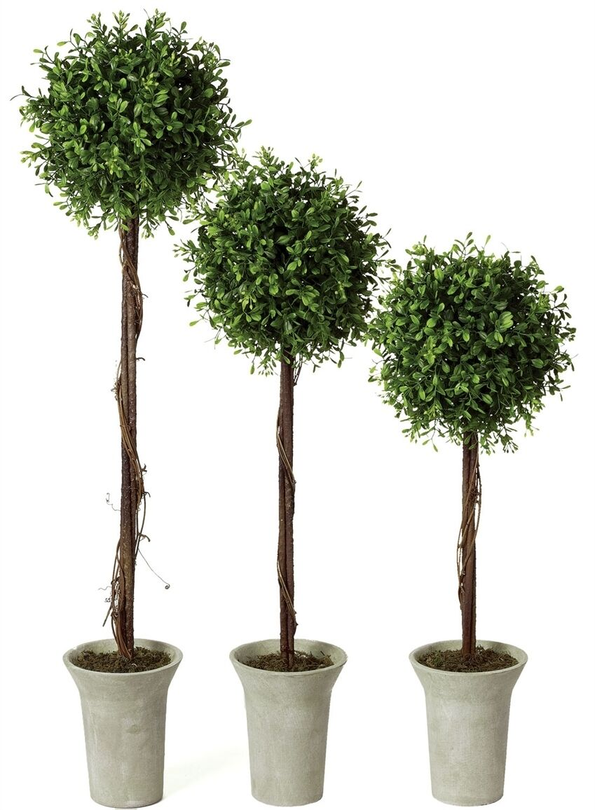Sullivan 22 30 Boxwood Artificial Trees Set Of 3 Ebay