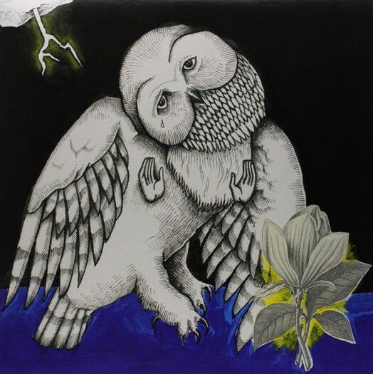 SONGS OHIA MAGNOLIA ELECTRIC CO DOUBLE LP VINYL NEW 33RPM 2013 ANN ED