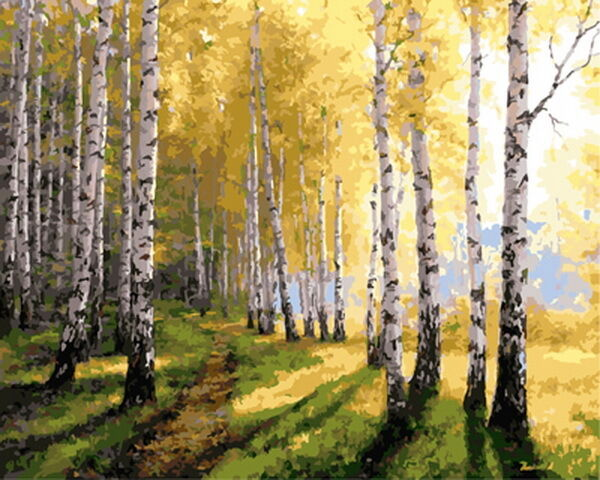 paint by number kit birch forest diy picture artwork 40x50 cm 16x20 inch canvas ebay. Black Bedroom Furniture Sets. Home Design Ideas