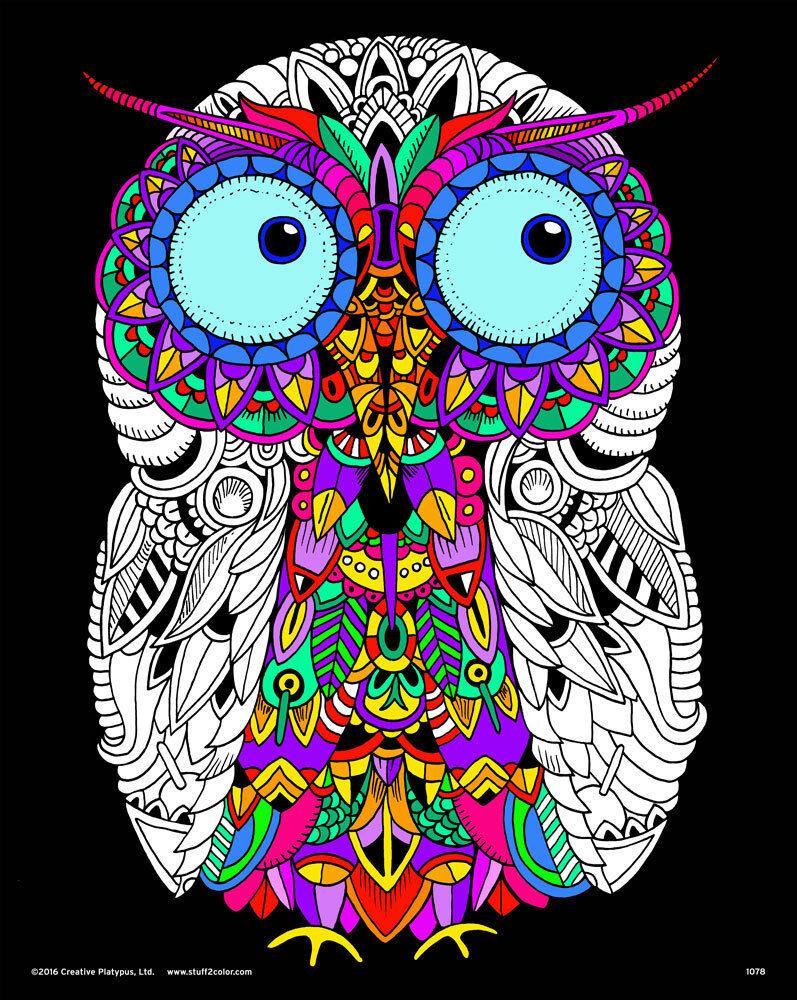 Owl Large 16x20\