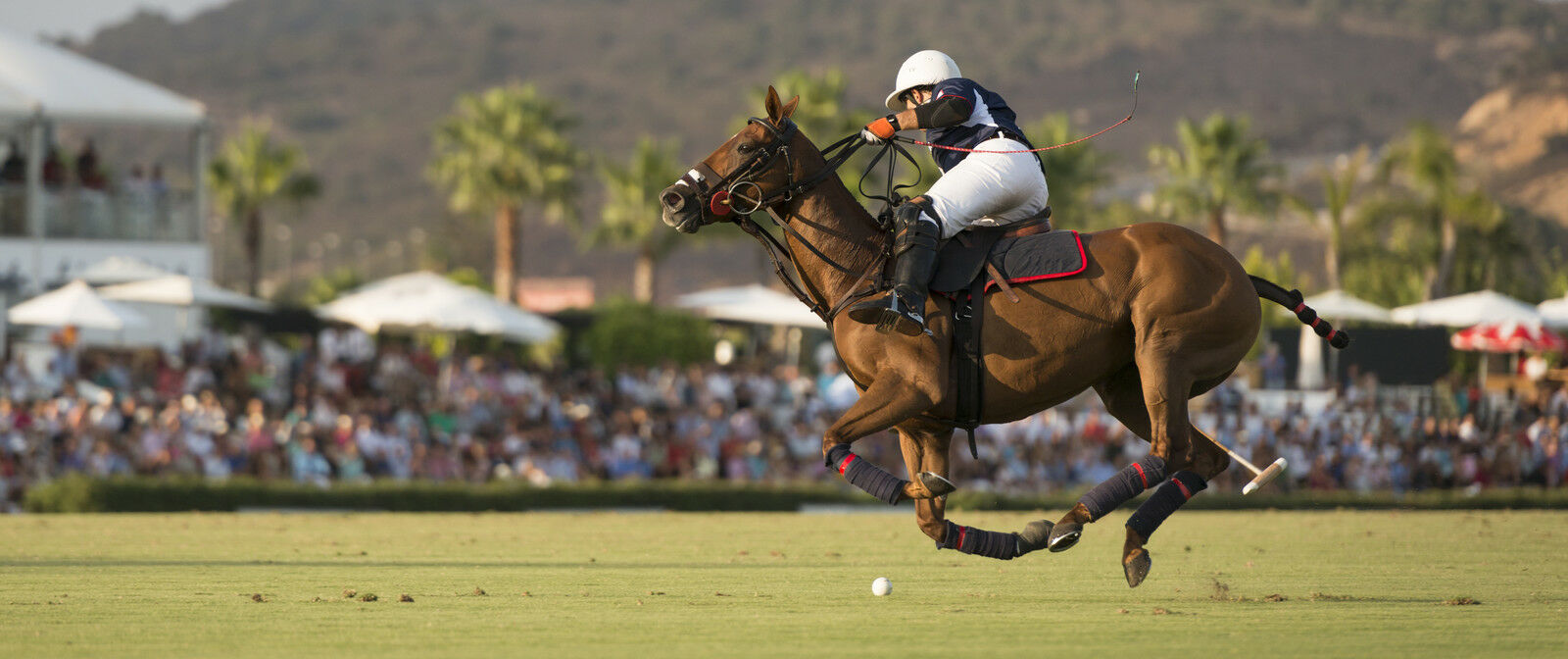 The Victory Cup Polo Match