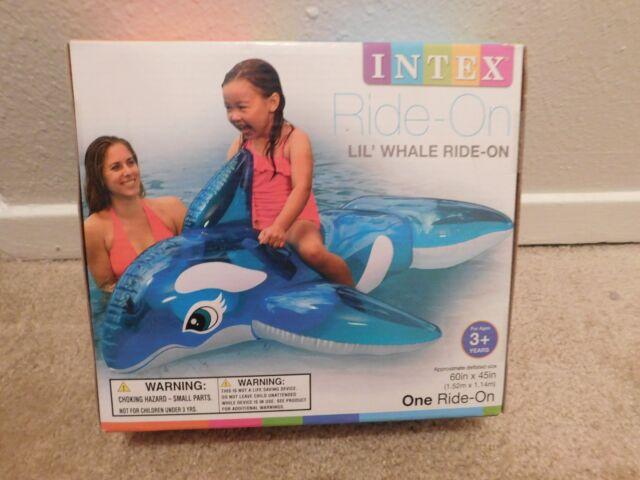 antigone whale rider