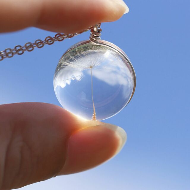 Crystal Ball Real Dandelion Seed Wishing Wish Necklace Long Silver Chain PB