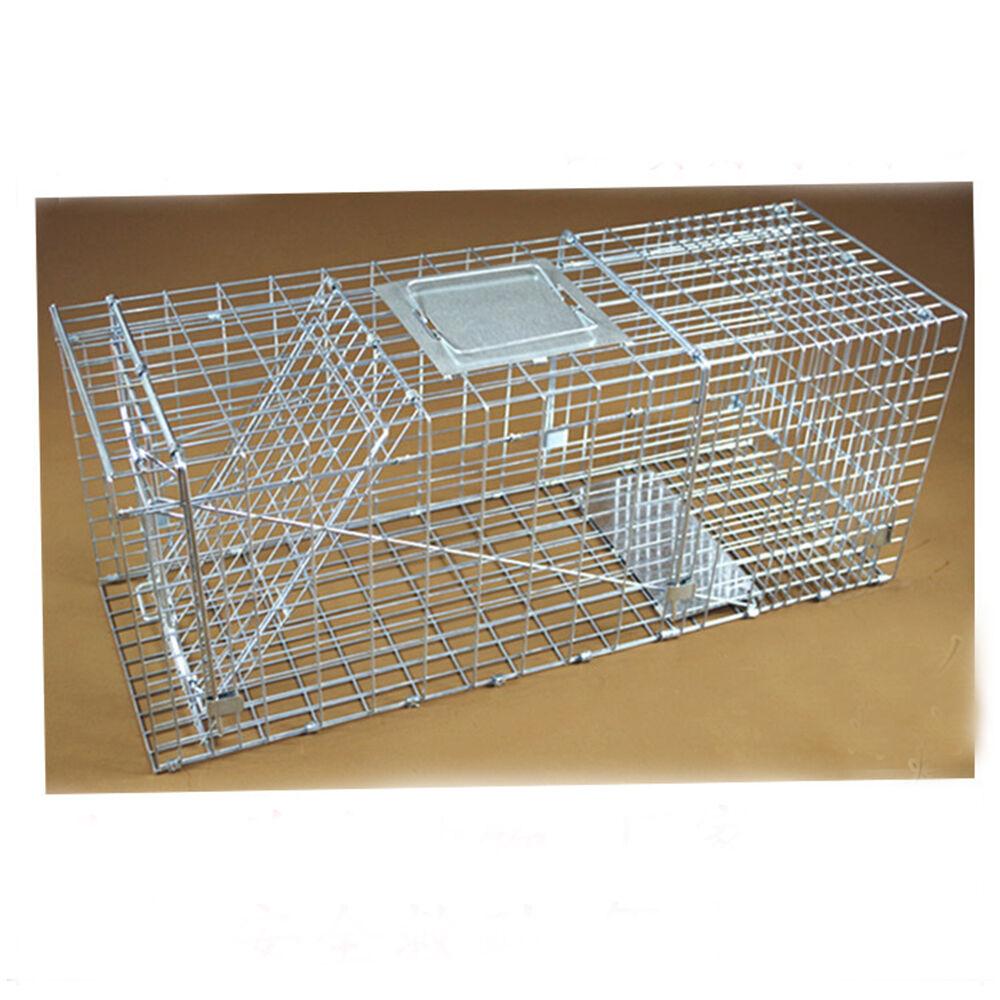 Hot Folding Animal Trap Cage Humane Live Possum Fox Rat Cat Rabbit