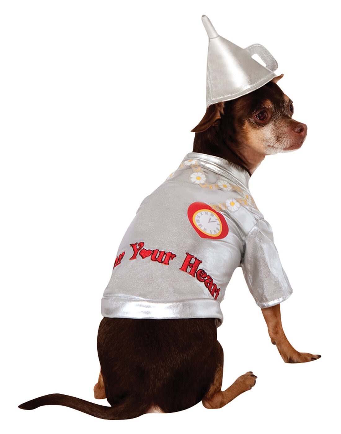 Image result for Rubies Costume Wizard of Oz Collection Pet Costume