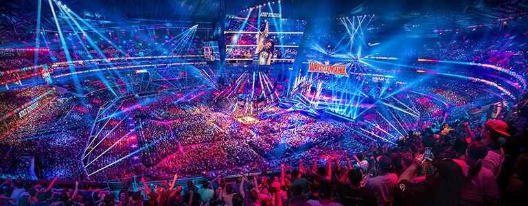 WWE 경기