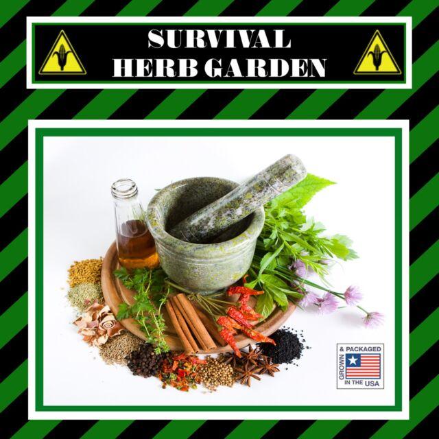 20 Varieties Survival Medicinal Herb Garden Seed Pack Non GMO ...