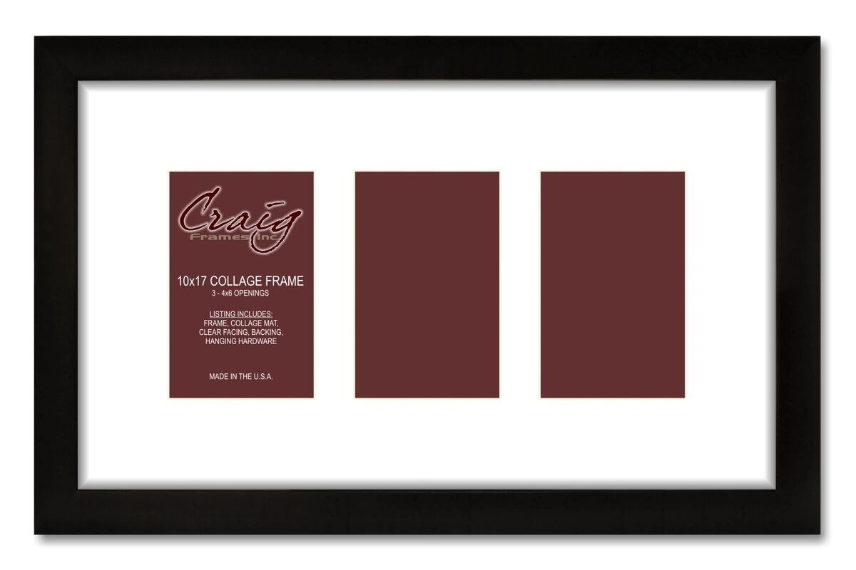 Craig frames 10x17 black picture frame with 3 4x6 openings white picture 1 of 5 jeuxipadfo Gallery
