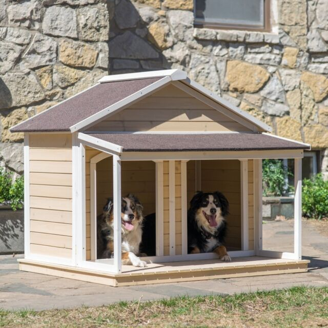 Should I Buy A Dog House