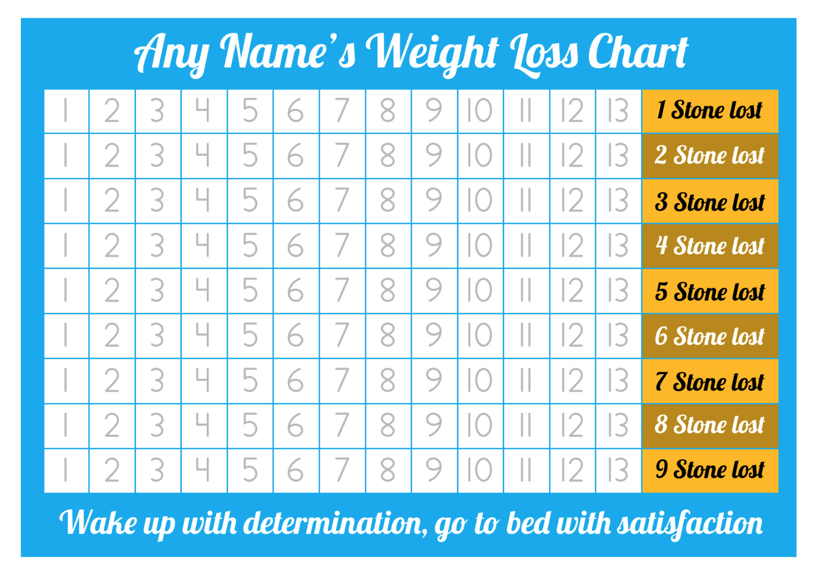 Personalised weight loss chart 9 stone laminated with 2 sheets resntentobalflowflowcomponenttechnicalissues nvjuhfo Image collections