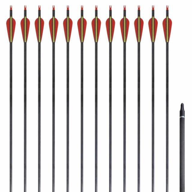 "vidaXL 12x Carbon Pfeile Recurve Bogen Kohlenstoff Pfeil Bogenpfeile 30"" 0,76cm"