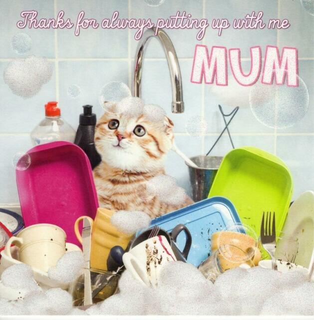 Mothers day greetings cards mothering sunday greeting card putting thanks mum mothers day cute flittered cat card quality tracks greeting cards m4hsunfo