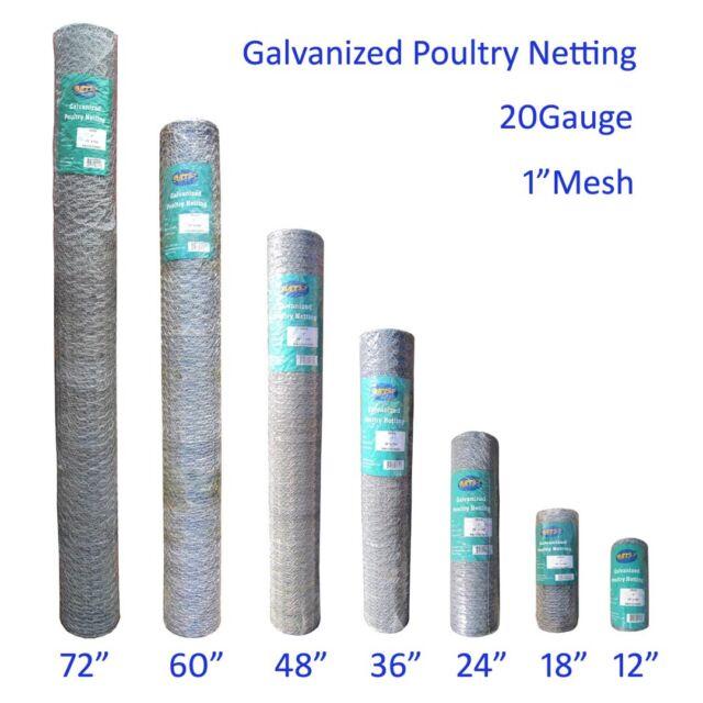 MTB Galvanized Hexagonal Poultry Netting Chicken Wire 12\