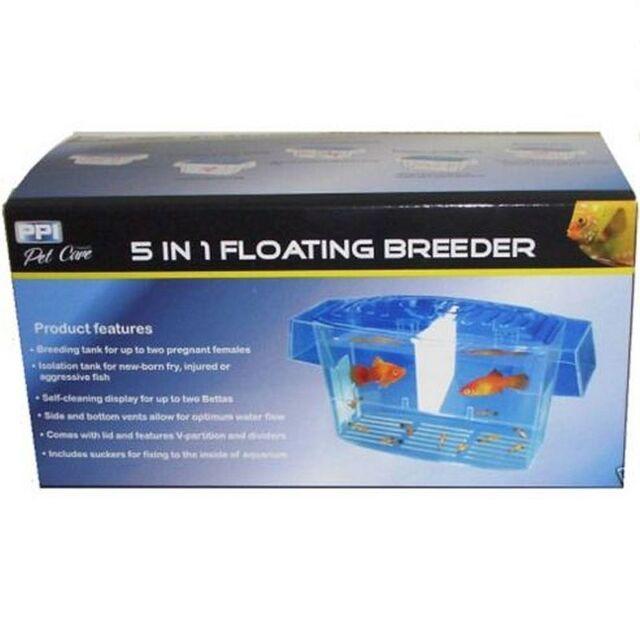 Aquarium 5 in 1 Floating Breeder Breeding Tank x2 Betta Display Isolation Tank