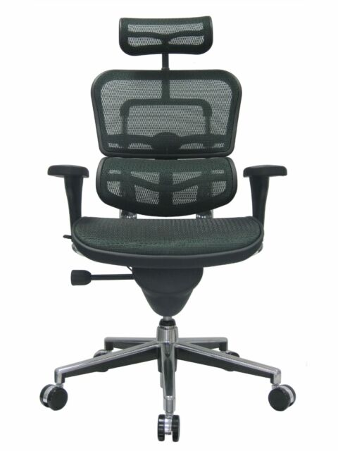 New Ergohuman Chair W Headrest Mesh By Eurotech