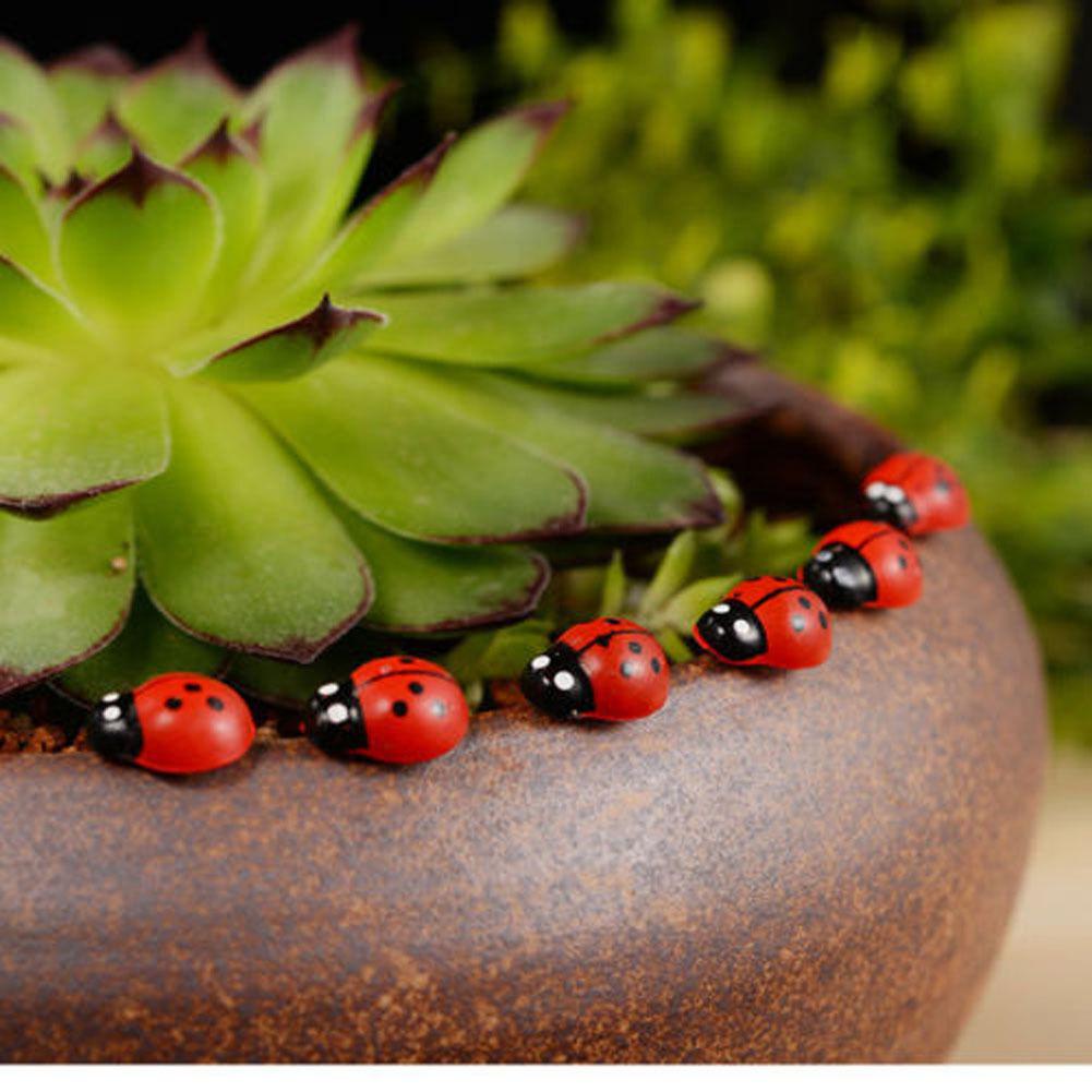 50pcs Wooden Ladybird Beetle Ladybug for Microlandschaft Garden ...