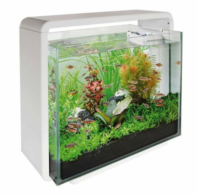 Superfish home 40 glass aquarium fish tank white 40l with for Used fish tanks for sale many sizes