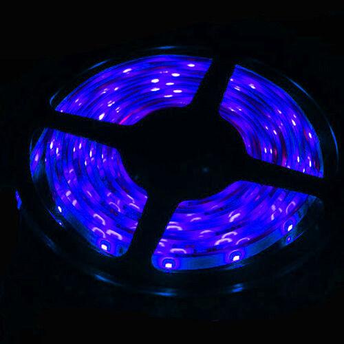5m 12v waterproof 300 led rgb strip light 3528 smd lamp ribbon 5m 12v waterproof 300 led rgb strip light 3528 smd lamp ribbon tape roll kit us blue dc power supply ebay aloadofball Gallery