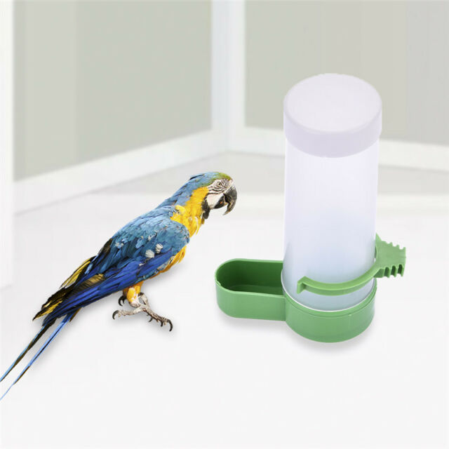 Automatic pet bird parrot food water feeder drinking bowl