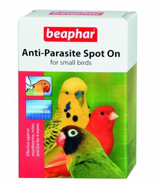 Beaphar ANTIPARÁSITO punto en Wormer ivermectina tratamiento para pájaro enjaulado aviario