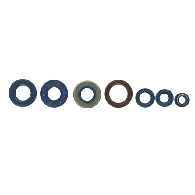 Motorsimmerringsatz ATHENA P400130400204/1
