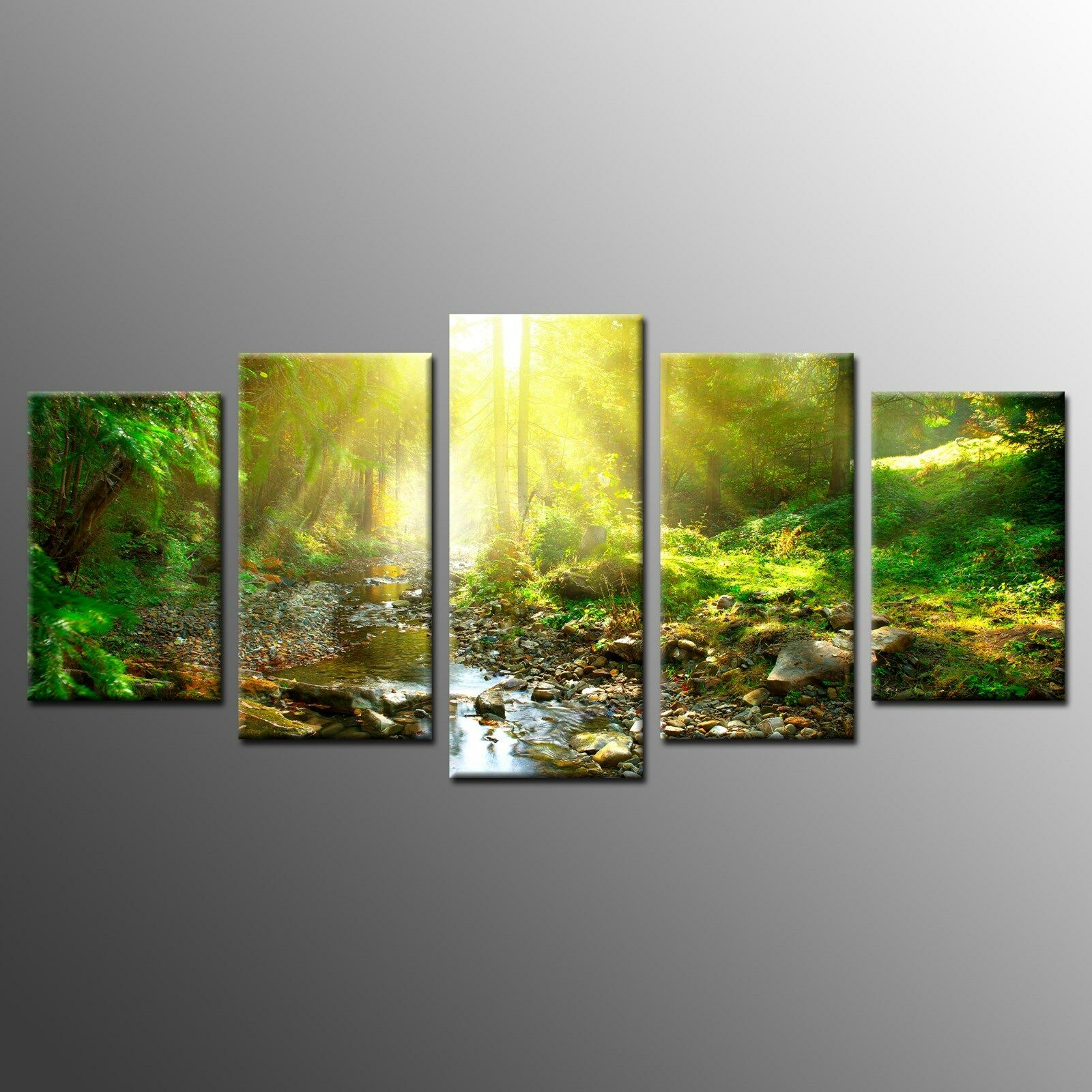 Framed HD Wall Art Painting Green Woods Sunlight Stretched Canvas ...