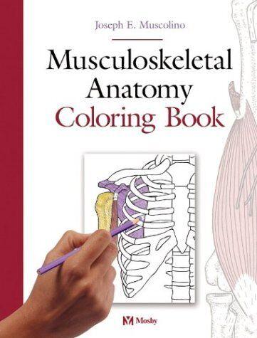 Musculoskeletal Anatomy Coloring Book By Joseph E Muscolino 2004 Paperback