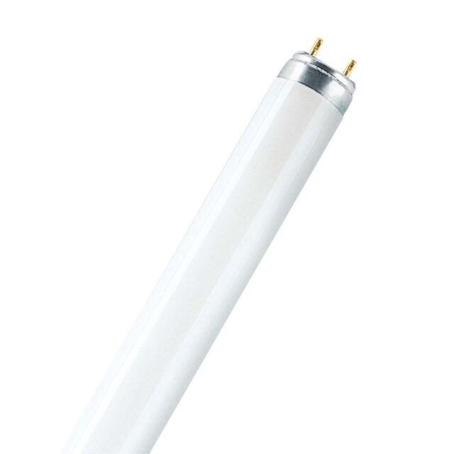 Osram Leuchtstoffröhre LUMILUX - T8, 840 Neutralweiß - 16W - Röhre Coolwhite