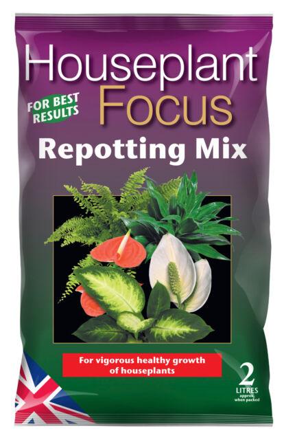 Growth Technology Houseplant Focus Repotting Mix 2 litre - multibuy savings!