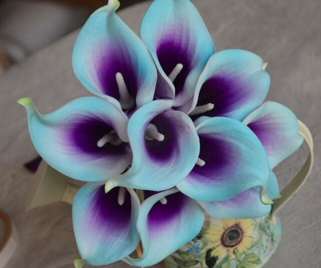 10 Picasso Light Aqua Purple Calla Lilies Real Touch Flowers for ...