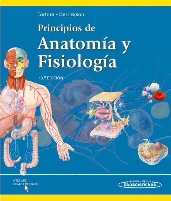 Anatomia Y Fisiologia Basica Del Corazon Pdf - Best Hawaiian Deals