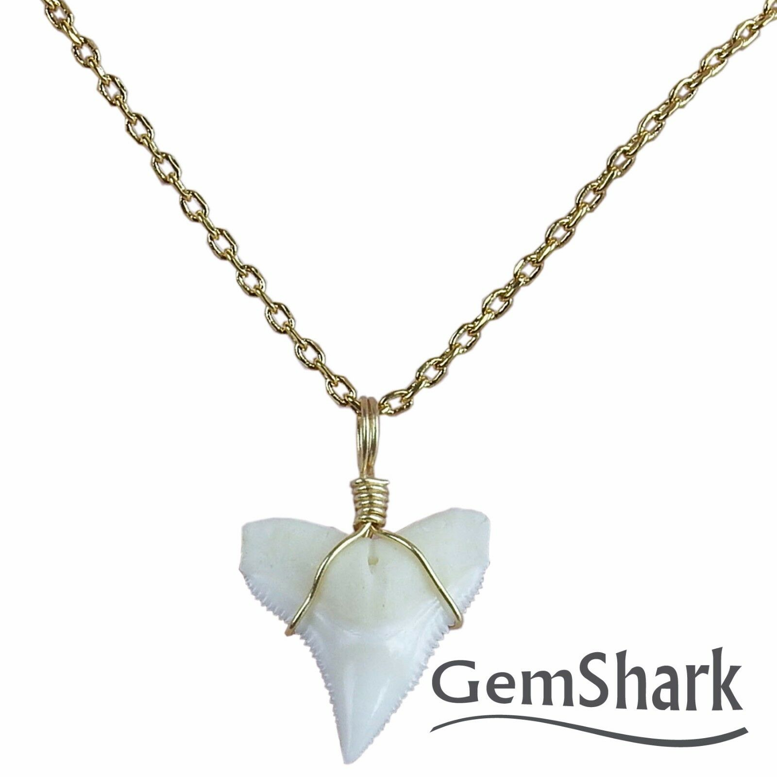 shark claire tooth necklace silver s pendant ca