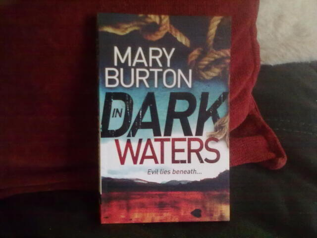 In Dark Waters by Mary Burton Paperback English Genre Fiction