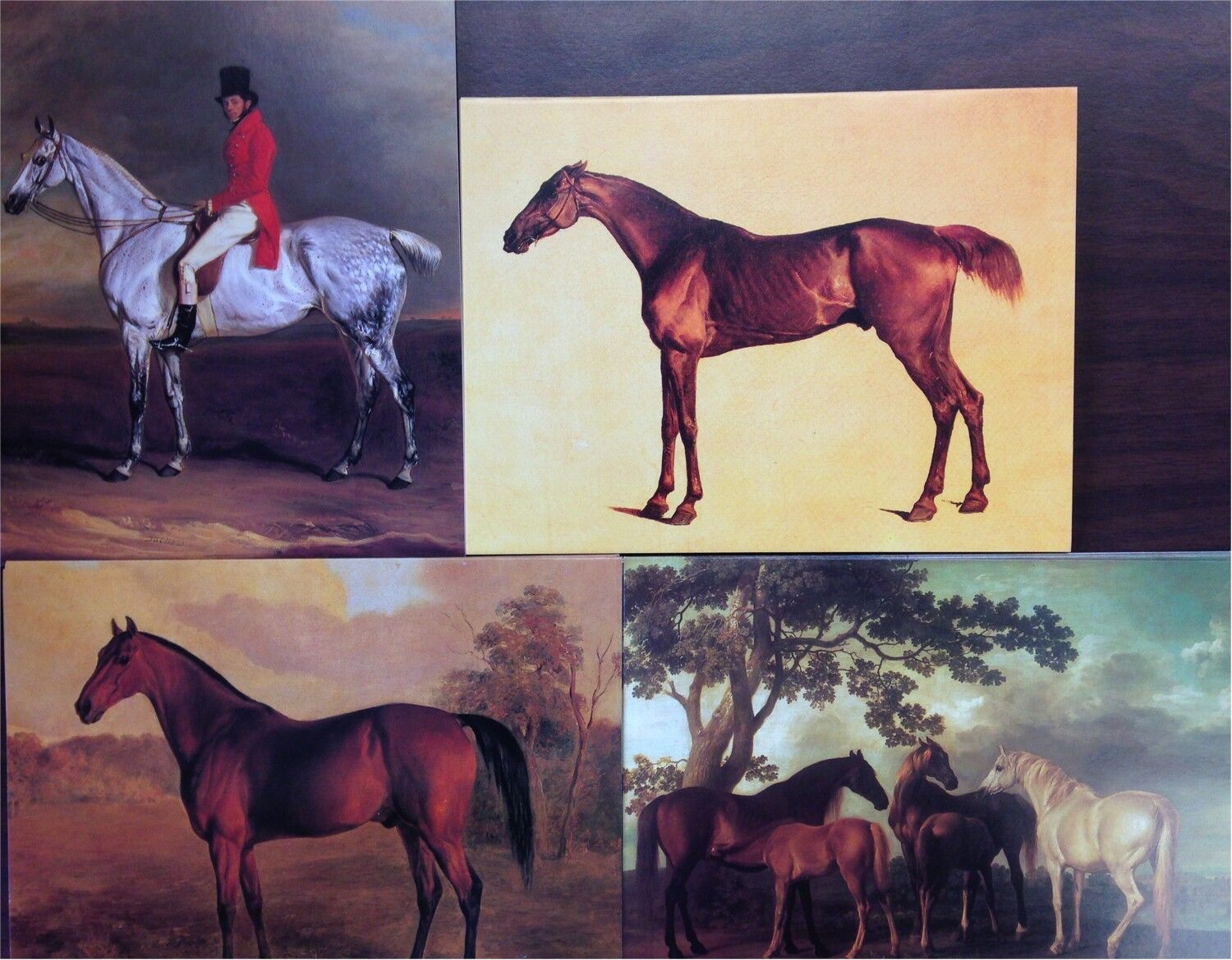 Horses 20 blank greeting cards w envelopes four fine art designs picture 1 of 2 m4hsunfo
