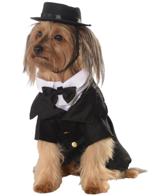 Rubie\'s Big Dapper Puppy Dog Halloween Pet Costume Fancy Clothes ...