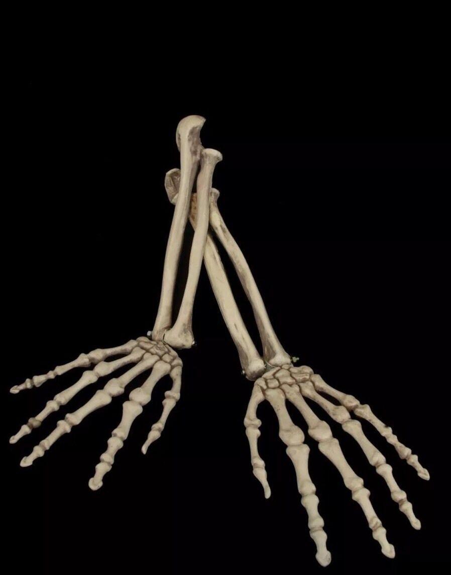 Halloween Skeleton Arm Set Cemetery Graveyard Decoration Haunted
