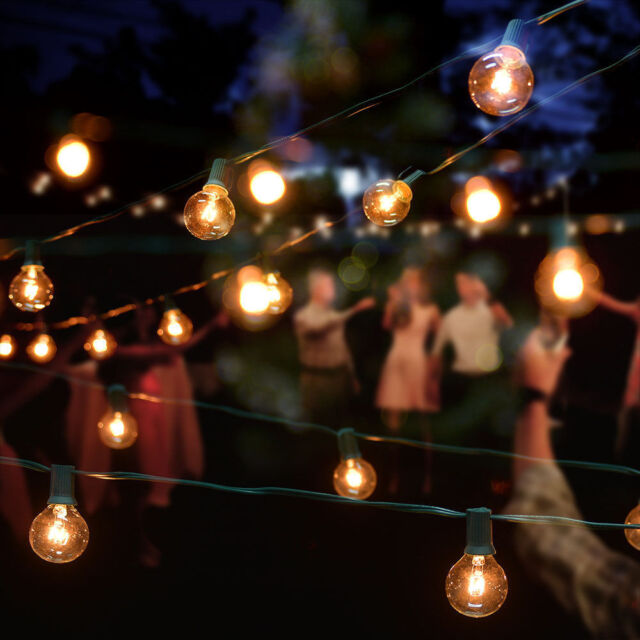 G40 patiobistro globe light string 25 feet clear bulbs outdoor use g40 patiobistro globe light string 25 feet clear bulbs outdoor use aloadofball Gallery