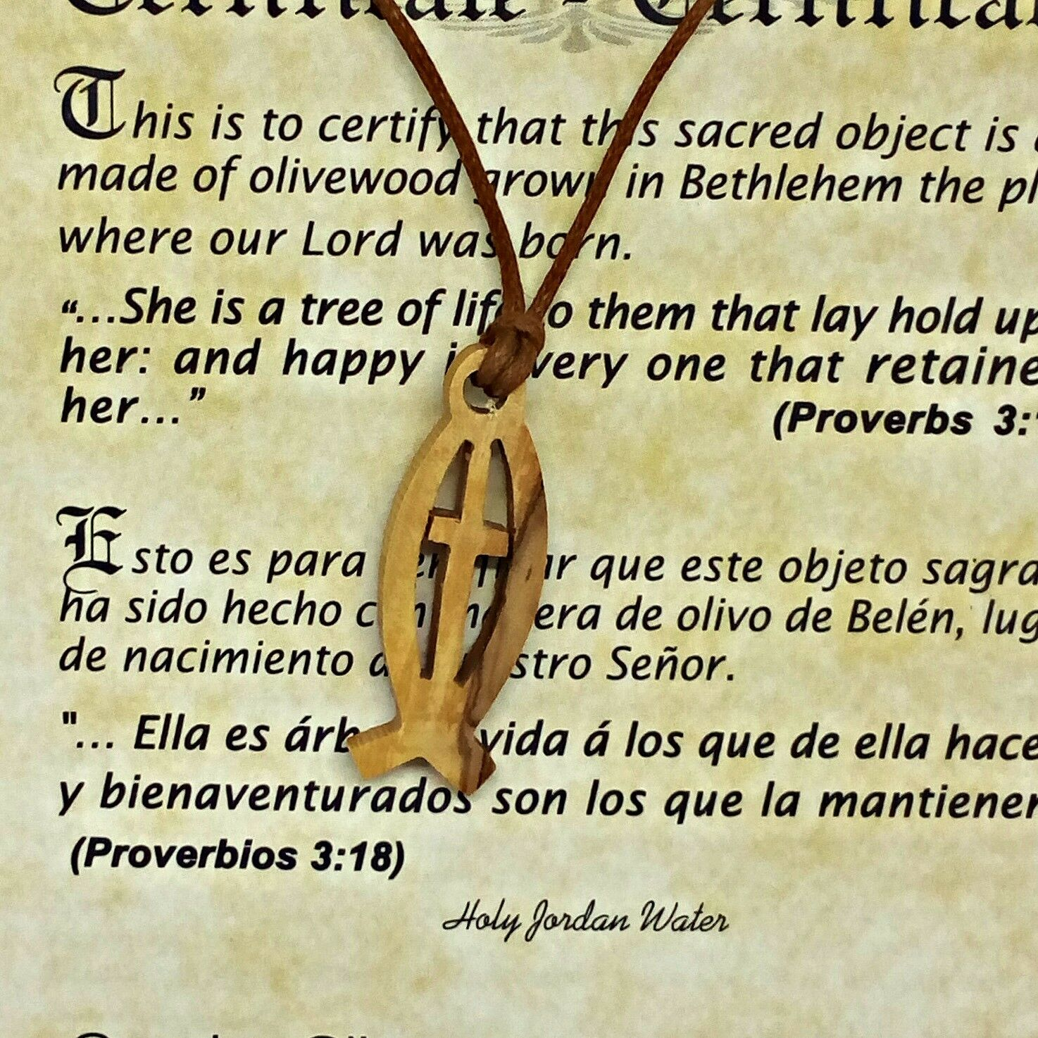 Ichthys fish symbol vertical v 2 olive wood pendant christian picture 1 of 5 biocorpaavc Choice Image