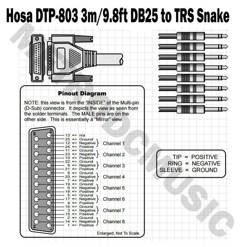 Hosa DTP-803 Balanced Snake DB25 to 1/4 in TRS 3m OFC Conductors ...