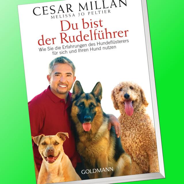 CESAR MILLAN | DU BIST DER RUDELFÜHRER | Erfahrungen des Hundeflüsterer (Buch)