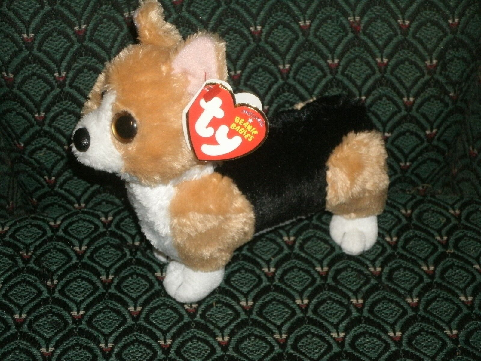 otis the dog. picture 1 of 3 otis the dog