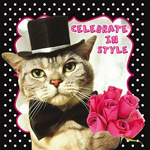 Funny Humour Pet Pawtraits Glitter Birthday Card Cat Celebrate In