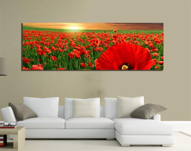 Quadri moderni tela 150x50 prato natura papaveri rossi for Quadri con papaveri rossi