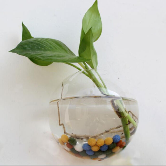 Creative Hanging Glass Planter Vase Terrarium Container Garden Wall