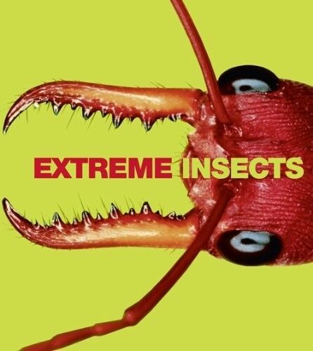 Very Good, Extreme Insects, Richard Jones, Book