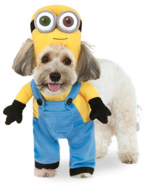 Rubies Minion Bob Arms Despicable Me Movie Suit Pet Dog Halloween ...