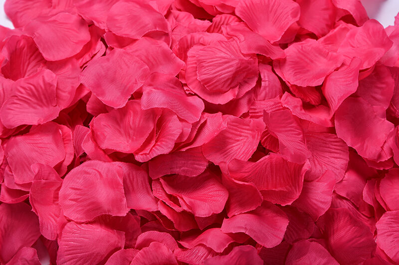 1000 5000pcs various colors silk flower rose petals wedding party picture 7 of 8 mightylinksfo