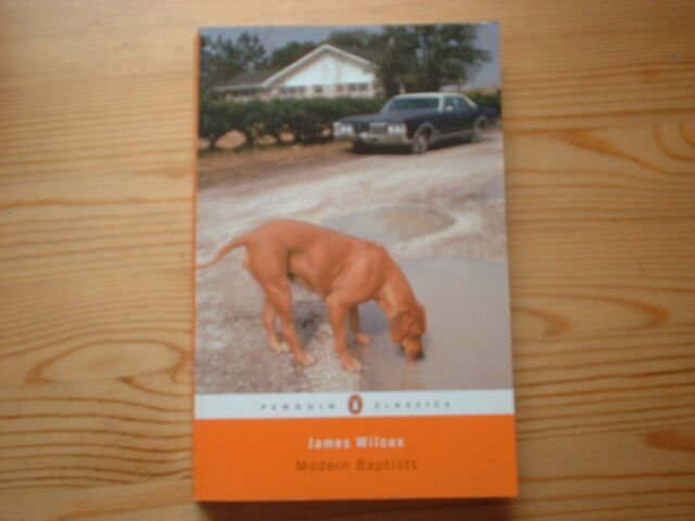 Modern Baptists by James Wilcox (Paperback, 2006)