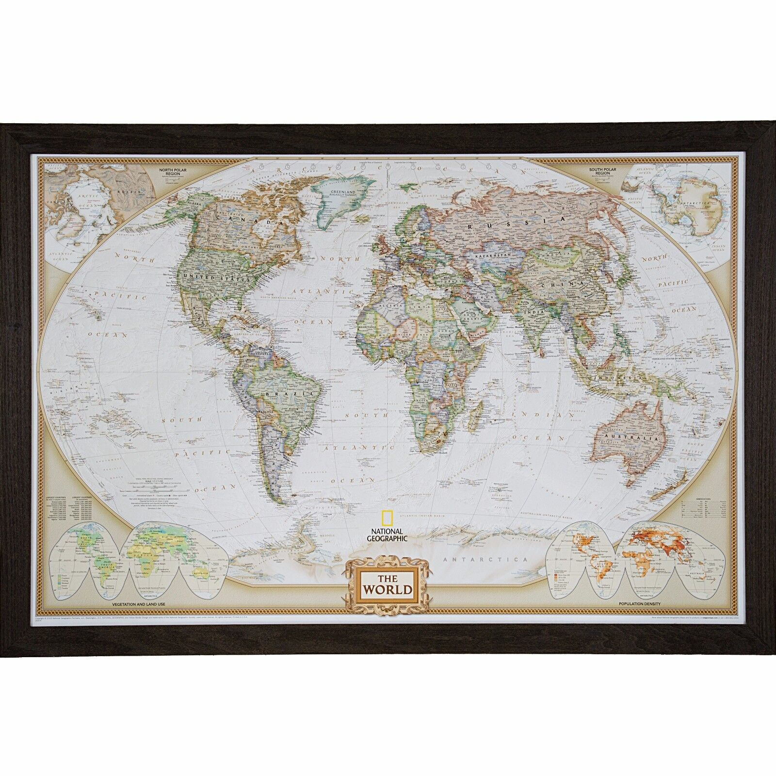 Craig frames executive world push pin travel map with pins 24 x 36 craig frames executive world push pin travel map with pins 24 x 36 15 driftwood ebay gumiabroncs Image collections